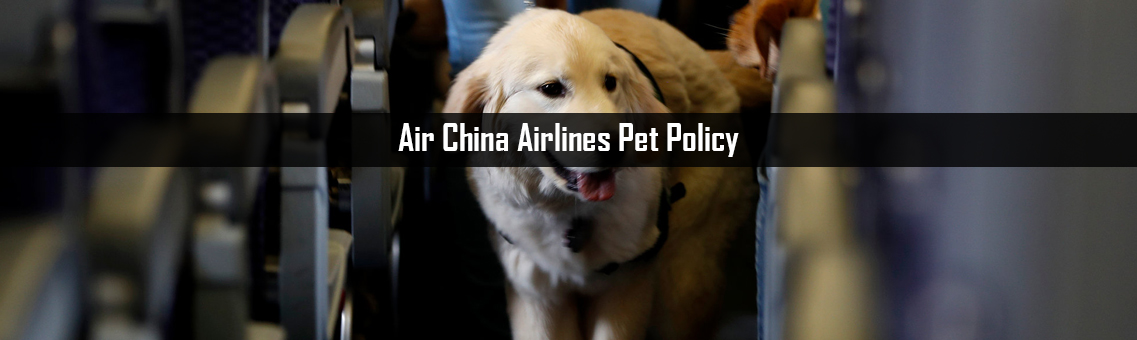 Air-China-Airlines-Pet