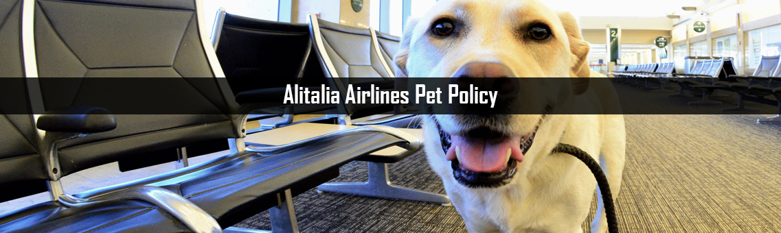 Inspection of Alitalia Airlines Pet Policy