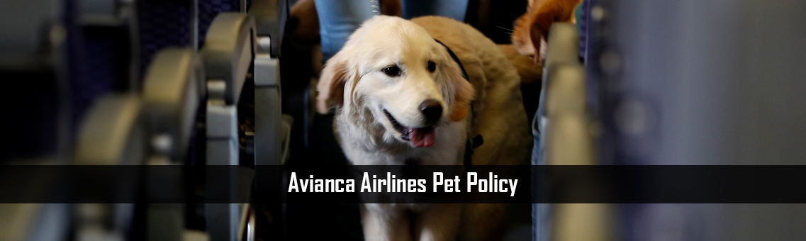 Inspection Of Avianca Airlines Pet Policy