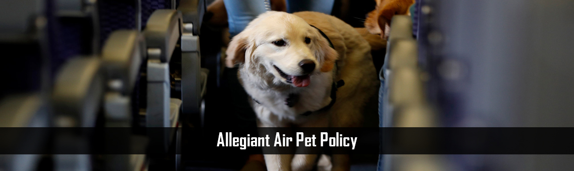 Allegiant Air Pet Policy