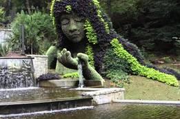 Atlanta Botanical Garden- Atlanta Travel Guide