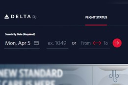 Process to Check Delta Airlines Flight Status