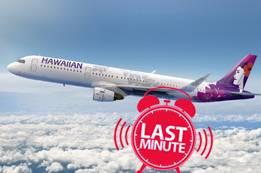 Hawaiian Airlines Last Minute Flights   Hawaiian Flight