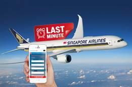 Singapore Airlines Last Minute Flights   Singapore Flight