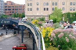 The High Line- A Best Place to Visit in New York