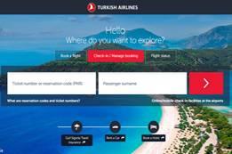 Turkish Airlines Check-In   Turkish Flight
