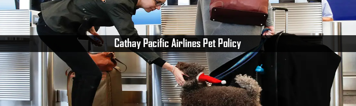 Inspection of Cathay Pacific Pet Policy