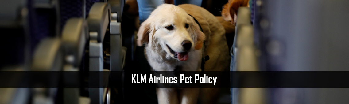 KLM-Airlines-Pet