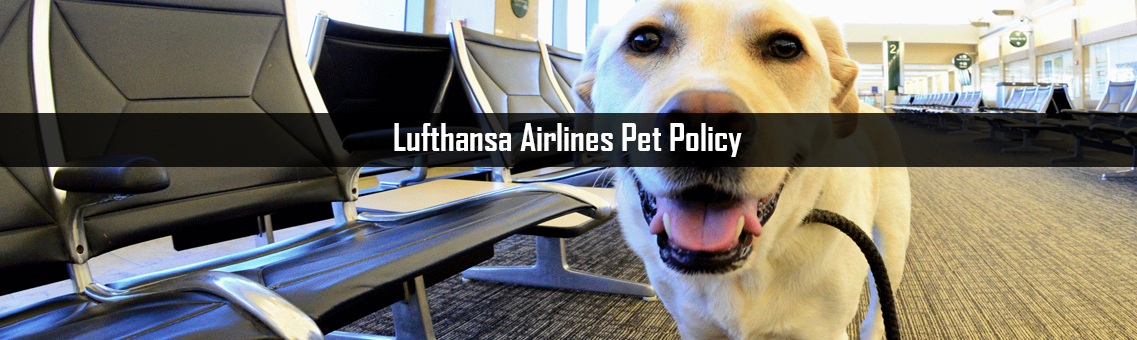Inspection of Lufthansa Airlines Pet Policy