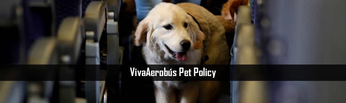 Inspection of VivaAerobus Pet Policy