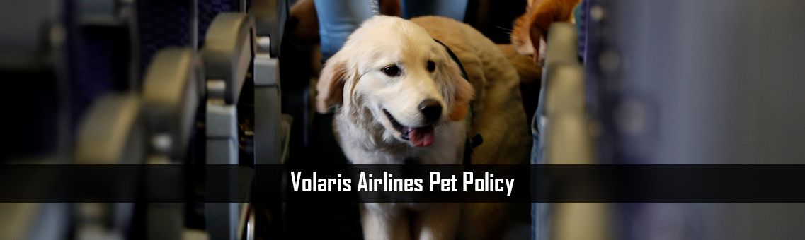 Inspection Of Volaris Airlines Pet Policy